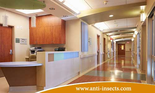 Anti-insect-hospital