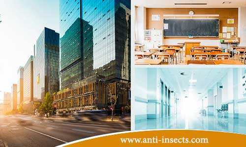 Anti-insect-in-government-facilities