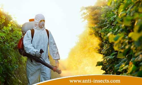 anti-insects-menia