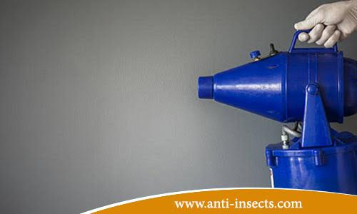anti-insects-suez