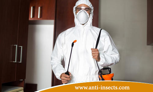Insecticide-odorless