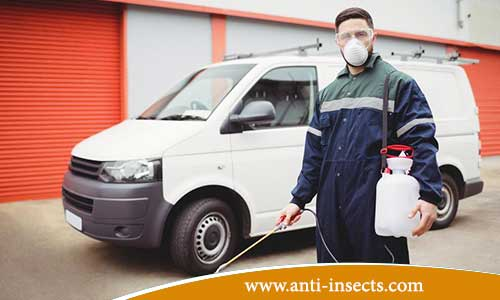 Services - control - insects - reptiles