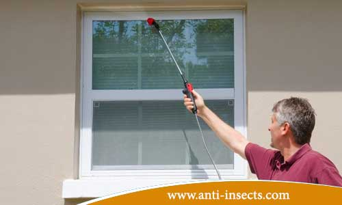 http://www.anti-insects.com/wp-content/uploads/2017/10/Kafr-El-Sheikh-Insect-Control-Company.jpg